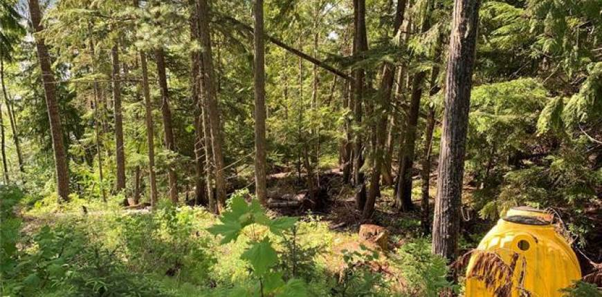 28 Simard Road, Enderby, British Columbia, Canada V0E1V5, 2 Bedrooms Bedrooms, Register to View ,1 BathroomBathrooms,House,For Sale,Simard,10207085