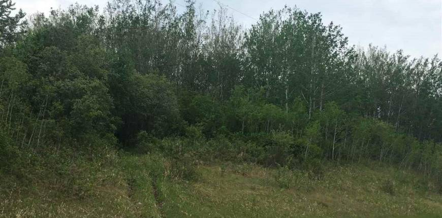 township62 RG RD 411, Rural Bonnyville M.D., Alberta, Canada T9M1P4, Register to View ,For Sale,E4100378