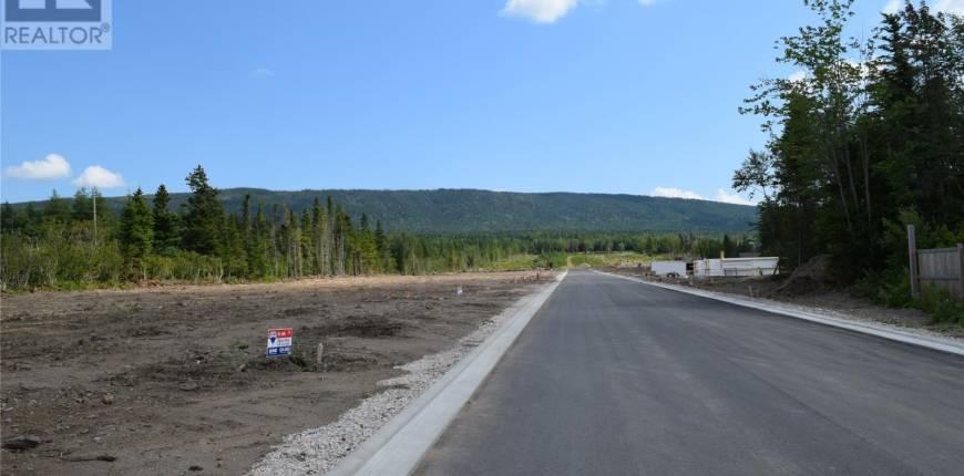 31 Pikes Street, PASADENA, Newfoundland & Labrador, Canada A0L1K0, Register to View ,For Sale,Pikes,1160500