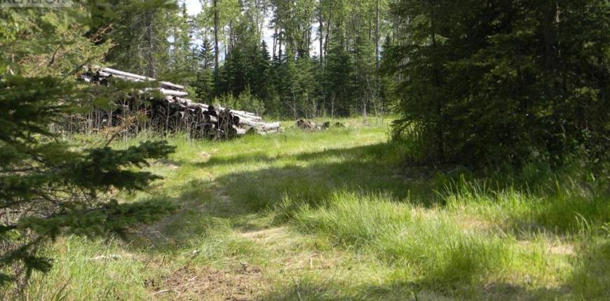 135 Meadow Ponds Drive, Rural Clearwater County, Alberta, Canada T4T1A7, Register to View ,For Sale,Meadow Ponds,A1021062