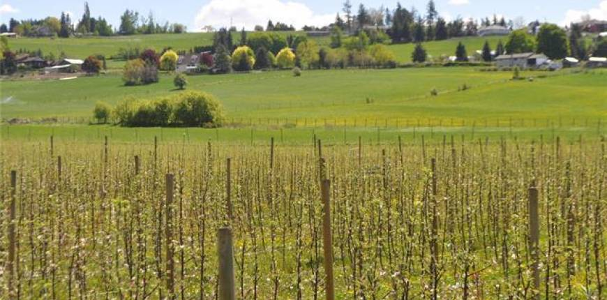 Lot 6 Springfield Road, Coldstream, British Columbia, Canada V1T9L6, Register to View ,For Sale,Springfield,10217081