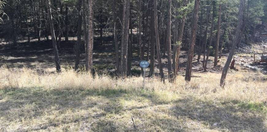 Lot 45 MOUNTAIN VIEW DRIVE, Fairmont Hot Springs, British Columbia, Canada V0B1L1, Register to View ,For Sale,MOUNTAIN VIEW DRIVE,2436882