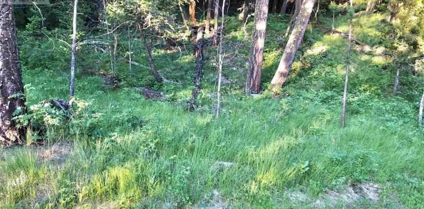 LOT 22 BLACKSTOCK ROAD, 100 Mile House, British Columbia, Canada V0K2E1, Register to View ,For Sale,BLACKSTOCK,R2525439