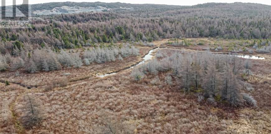 21 Rumboldts Lane, Bay Roberts, Newfoundland & Labrador, Canada A0A1X0, Register to View ,For Sale,Rumboldts,1224458