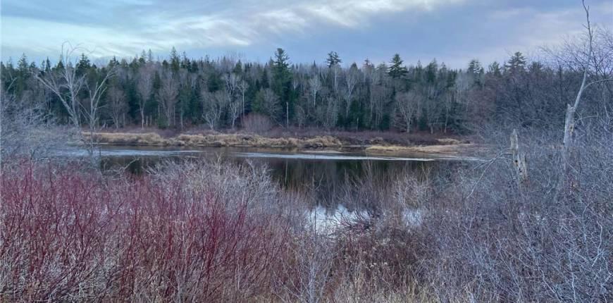 Land Howard Road, Blackville, New Brunswick, Canada E9B2B4, Register to View ,For Sale,NB051987