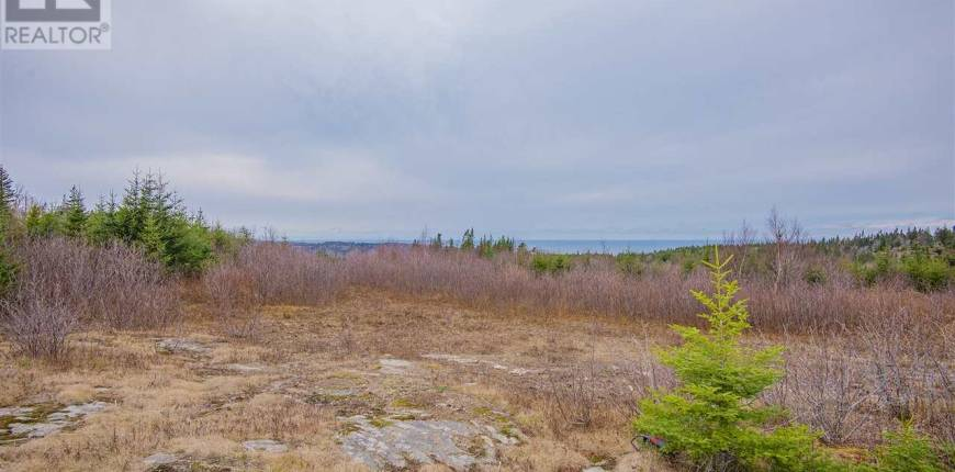 Lot 2 217 Highway Rossway & Gullivers Cove, Rossway, Nova Scotia, Canada B0V1A0, Register to View ,For Sale,202100168