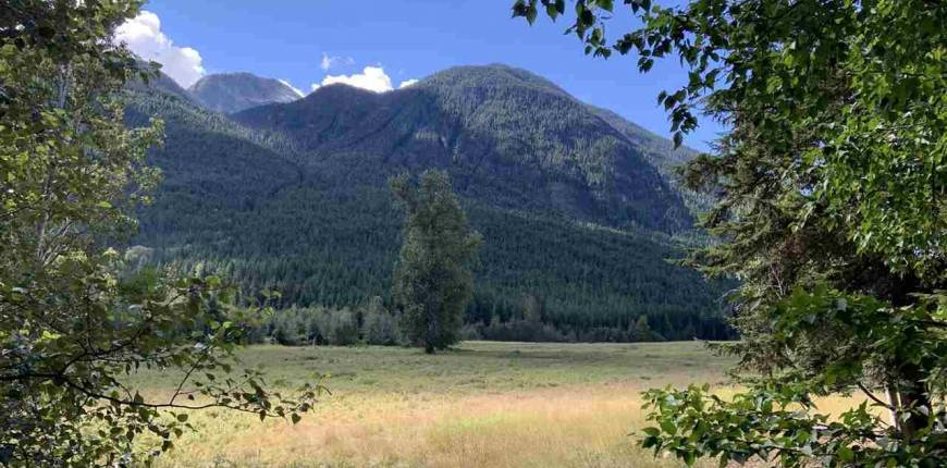 DL 969 BLACKWATER ROAD, D'Arcy, British Columbia, Canada V0N1L0, Register to View ,For Sale,BLACKWATER,R2530988