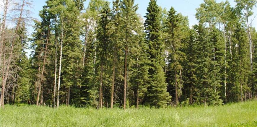 Lot #3 32529 Range Road #52, Rural Mountain View County, Alberta, Canada T0M1X0, Register to View ,For Sale,32529 Range Road #52,A1077058