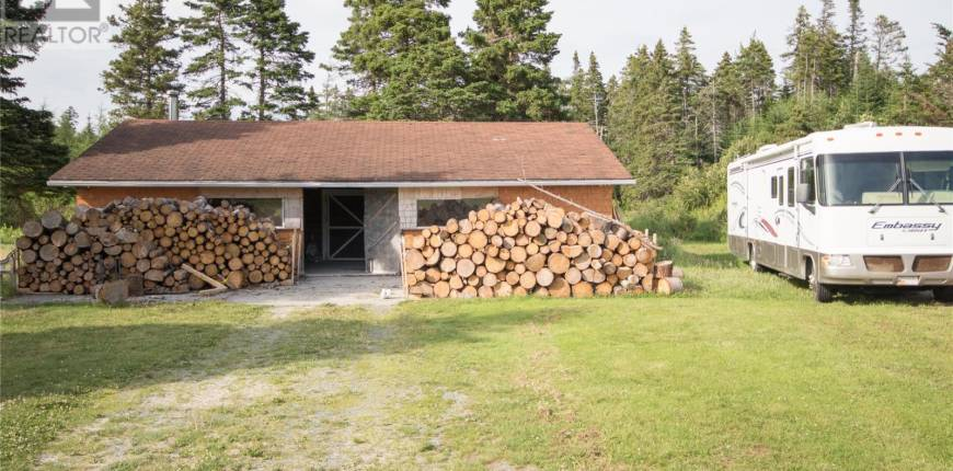 25 Mill Road, South River, Newfoundland & Labrador, Canada A0A1W0, 5 Bedrooms Bedrooms, Register to View ,3 BathroomsBathrooms,Recreational,For Sale,Mill,1226819