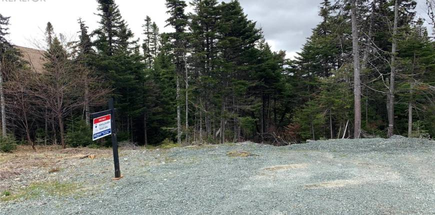 21 Cherrywood Drive, Torbay, Newfoundland & Labrador, Canada A1K0B5, Register to View ,For Sale,Cherrywood,1228290