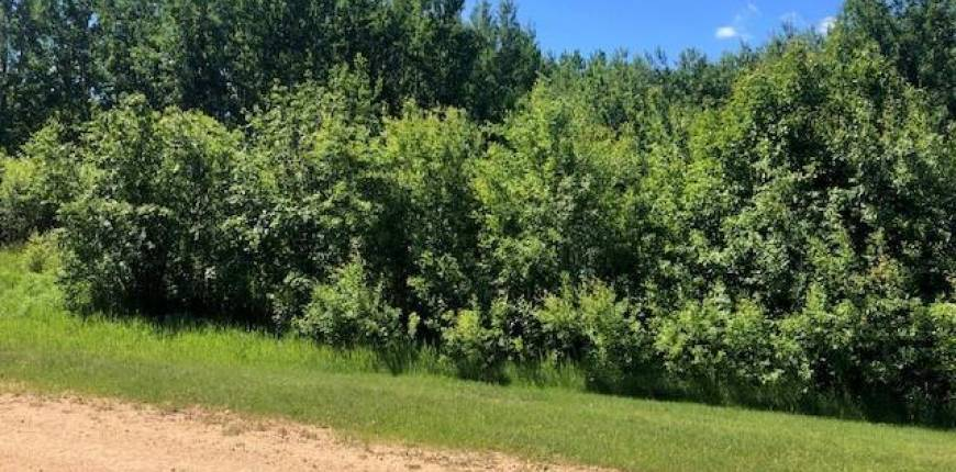 9 Crystal KY, Rural Wetaskiwin County, Alberta, Canada T0C2V0, Register to View ,For Sale,E4236327