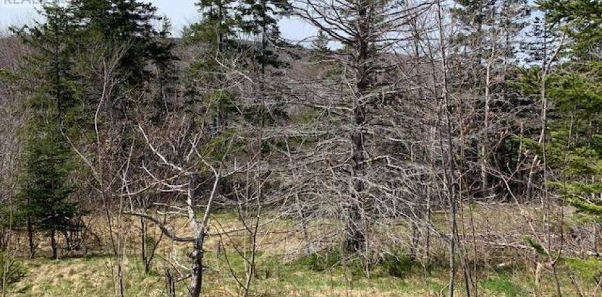 252 Highway, Whycocomagh, Nova Scotia, Canada B0E3B0, Register to View ,For Sale,202110104
