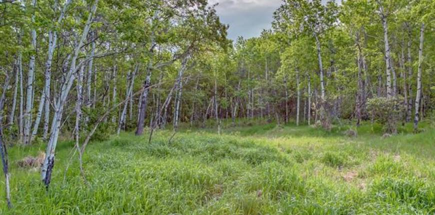 56 Stonewood Dale, Rural Rocky View County, Alberta, Canada T3Z3M8, Register to View ,For Sale,Stonewood,A1105003
