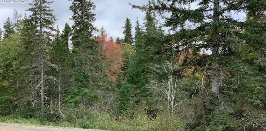 Portage Road, Whycocomagh Portage, Nova Scotia, Canada B0E2K0, Register to View ,For Sale,202111555