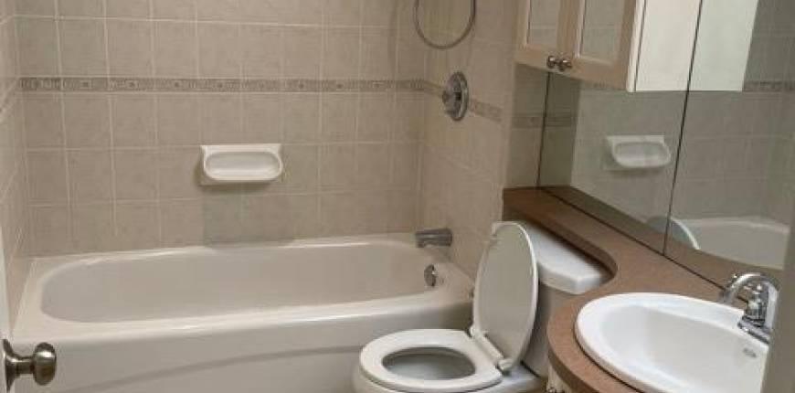 #LOWER -6 GLEN EDYTH DR, Toronto, Ontario, Canada M4V2V7, 1 Bedroom Bedrooms, Register to View ,1 BathroomBathrooms,For Rent,Glen Edyth,C5238930