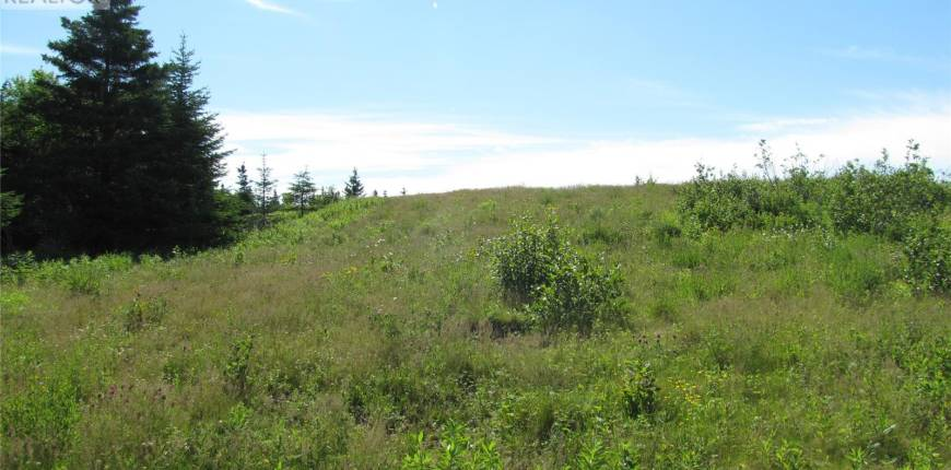 0 Main Road, Millville, Newfoundland & Labrador, Canada A0N1J0, Register to View ,For Sale,Main,1230826