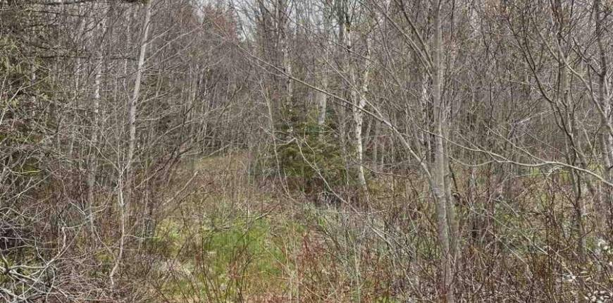 Old Martin Road, St. Felix, Prince Edward Island, Canada C0B2B0, Register to View ,For Sale,202112412