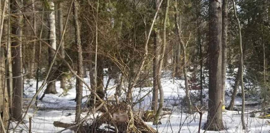 1151 25 SIDE RD, Milton, Ontario, Canada L0P1J0, Register to View ,For Sale,25 Side,W5250401