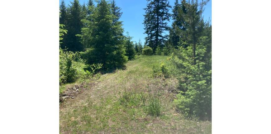 999 KELLY DRIVE, Castlegar, British Columbia, Canada V1N4P5, Register to View ,For Sale,KELLY DRIVE,2459010