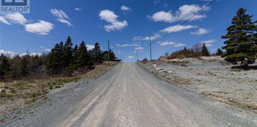 6 Youden Place, Brigus-Cupids, Newfoundland & Labrador, Canada A0A2B0, Register to View ,For Sale,Youden,1231700