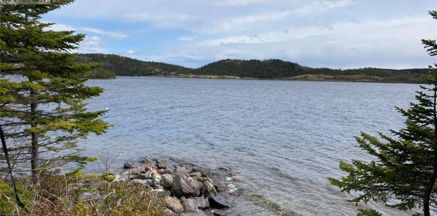 277 Middle Gull Pond Road, Middle Gull Pond, Newfoundland & Labrador, Canada A0A1B0, 2 Bedrooms Bedrooms, Register to View ,1 BathroomBathrooms,Recreational,For Sale,Middle Gull Pond,1231824
