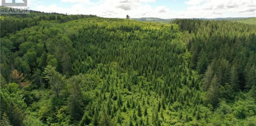 165 Acres Poodiac Road, Hammondvale, New Brunswick, Canada E4E3R9, Register to View ,For Sale,NB060008