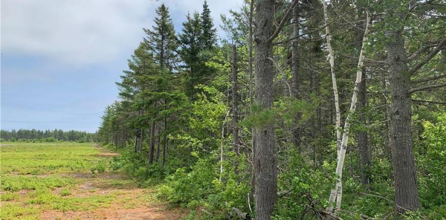 Ross Road, Néguac, New Brunswick, Canada E9G1T9, Register to View ,For Sale,NB060015