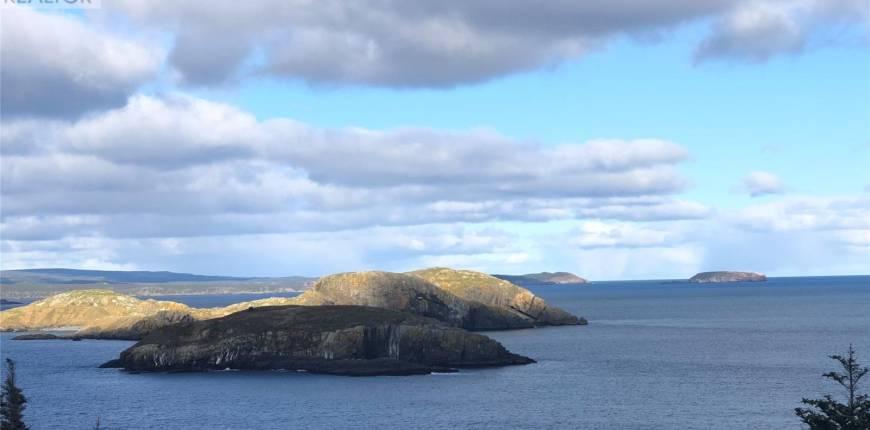 0 Gradys Point Road, Bauline East, Newfoundland & Labrador, Canada A0A4A0, Register to View ,For Sale,Gradys Point,1170538
